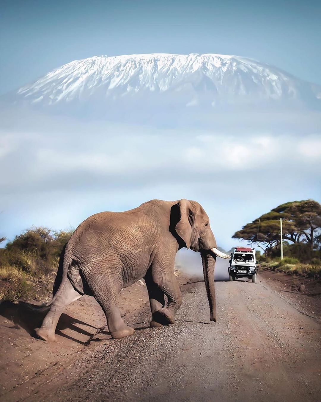 Top 10 things to do in Kenya