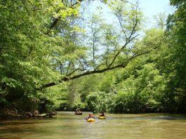 Top 10 things to do in Dahlonega, Georgia