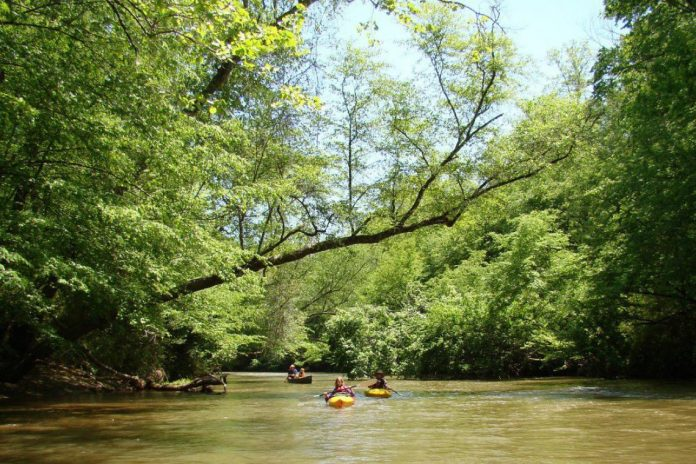 Top 10 things to do in Dahlonega, Georgia